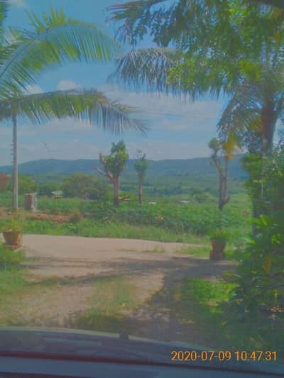 Land for Sale in Nam Nao, Phetchabun - Garden house Cool weather all year with natural water sources.