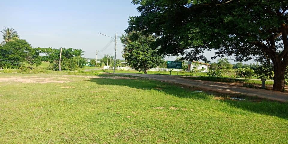 The best location land for building a house Na Chueak Municipality Beautiful view atmosphere