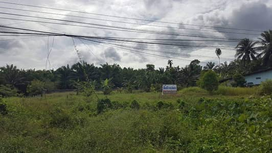 Land for Sale in Tha Chana, Suratthani - Land on the main road, 4 lanes, entrance to Mueang Surat Thani, Tha Chana District