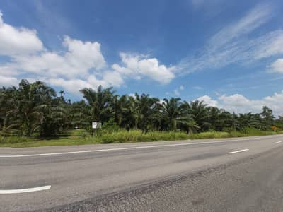 Land for Sale in Kra Buri, Ranong - Land for sale In front of Petchkasem Road Behind the stream, Ranong Province