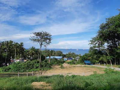 2 land plots, sold at a cheap price (with title deeds ready)
