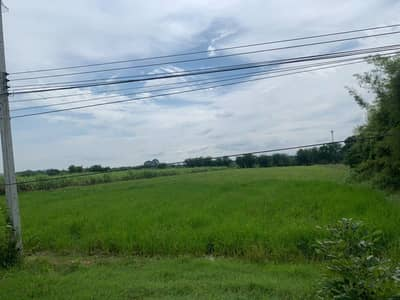 Land for Sale in Chom Bueng, Ratchaburi - Land for sale in Pak Chong Subdistrict, Chom Bueng District, Ratchaburi Province sell by owner