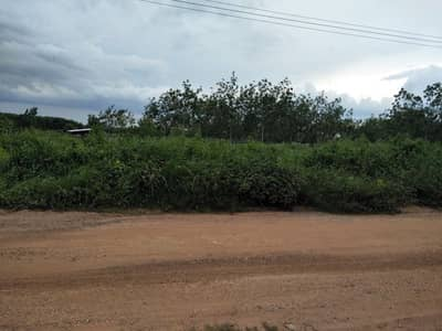 Land for Sale in Si That, Udonthani - Srithat land, Ban Kham Charoen, Udon Thani, next to the road