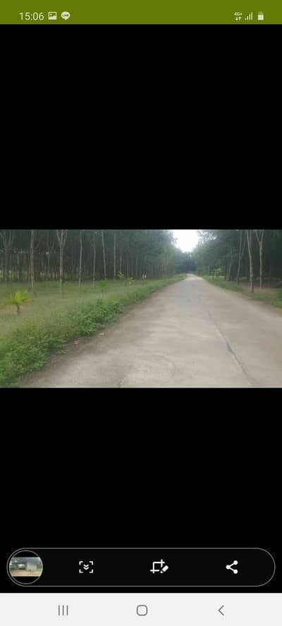 Land for Sale in Wang Chan, Rayong - Sell rubber plantation with houses on the canal, Pune road