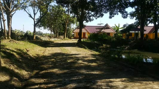 Hotel for Sale in Mae Sai, Chiangrai - Urgent !!! Resort for sale chiangrai area 8-3-94 rai