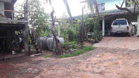 2 Bedroom Home for Sale in Non Sung, Nakhonratchasima - H01 2-storey detached house with fragrant coconut plantation, 5 rai, Non Sung District, Nakhon Ratchasima Province 30160