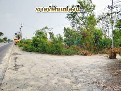 Land for Sale in Phra Nakhon Si Ayutthaya, Ayutthaya - Land for sale, land area 5-2-91 rai, good location, on the main road, 7 km from downtown Ayutthaya.