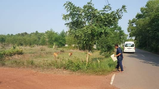 Land for Sale in Prachantakham, Prachinburi - ที่ดิน 1 89 ตรว.