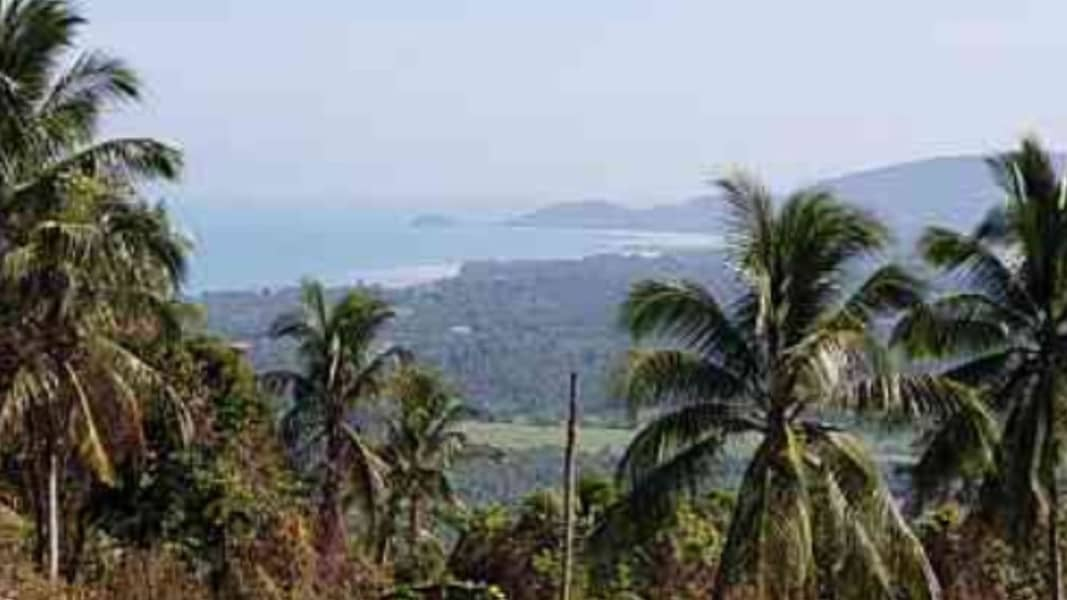 Koh Samui land for sale 27 rai 381 sq m. Sea view, 6 meters wide concrete road in front of Sea view about 14 rai, the other half is mountain view.