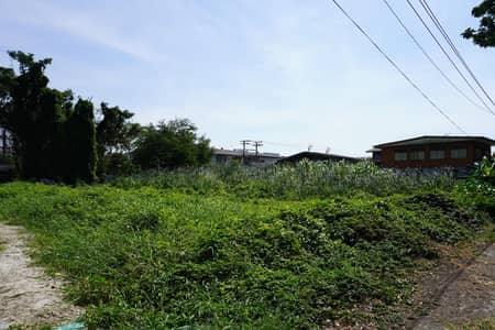 Land for Sale in Bang Na, Bangkok - Land for sale Lasalle sukhumvit area 401 sq. w. width 36 m.
