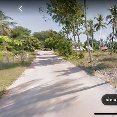 Land for Sale in Mueang Krabi, Krabi - ที่ดินเปล่า