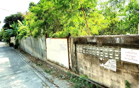 Land for Rent in Phra Khanong, Bangkok - Urgent for rent, vacant land 95 square meters, Soi Sukhumvit 97-1 (at the entrance of Soi Bang Chak Fit BTS station), near BTS Bang Chak, only 900 m for both short term and long term rental.