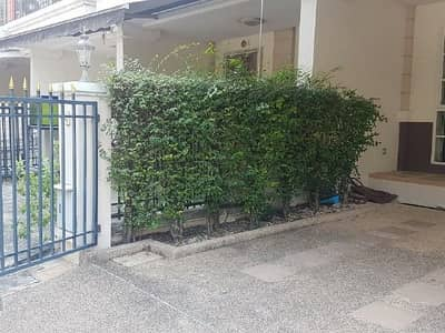 3 Bedroom Townhouse for Rent in Bang Kapi, Bangkok - Plus City Park Rama 9-Huamark Plus City Park Rama 9-Huamark for rent, a new 3.5-storey townhome, never been rented, 3 bedrooms, 4 bathrooms, near the expressway.