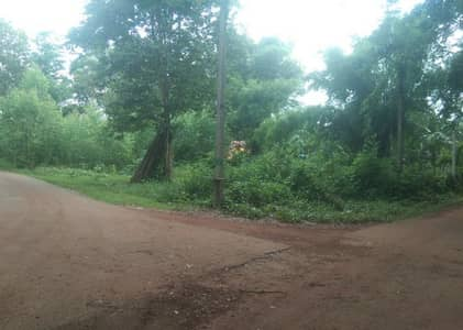 Land in Prachatkham District