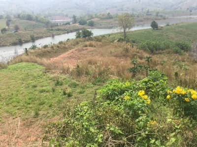 Land for Sale in Dan Sai, Loei - Land for sale in Khok Ngam Subdistrict, Dan Sai District, Loei Province