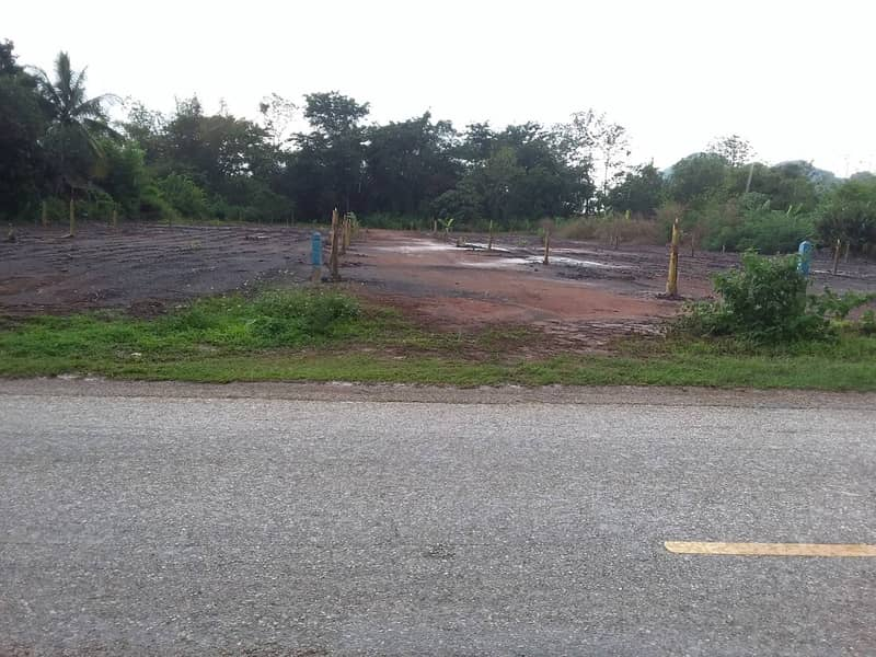 Land for sale, near the road, near the city, 6500 baht per square wah.
