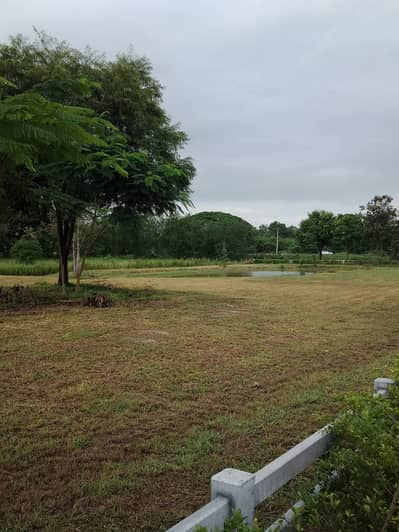Land for Sale in Pak Chong, Nakhonratchasima - Land for sale in Khao Yai, Pak Chong, price 8,750 baht per square wah, next to the water, mountain view, there are many plots to choose from, starting from 3 ngan ++. Near the market community, not more than 4 kilometers away from the motorway, only 1.5 k