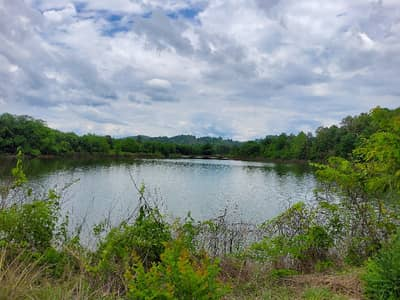 Land for Rent in Wiang Sa, Nan - Land for rent