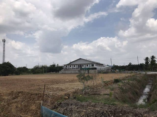 For rent long-term land that is filled with a total of 3 rai, can be divided into rai.