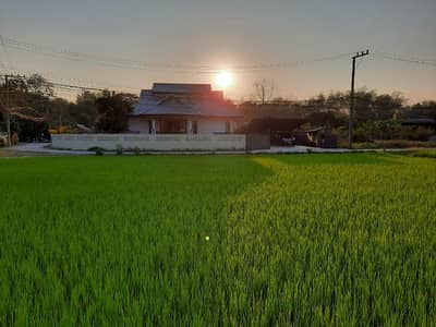 3 Bedroom Home for Sale in Mae Rim, Chiangmai - Elevated bungalow with loft convertion for sale