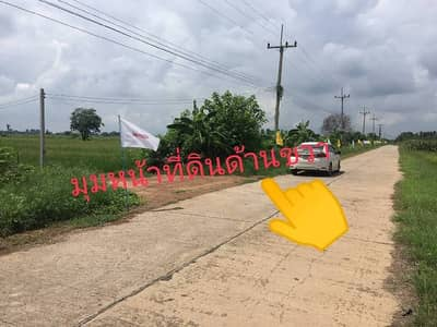 Land for Sale in Taphan Hin, Phichit - Land for sale 15-1-41.1 rai, good location Taphan Hin , Phichit
