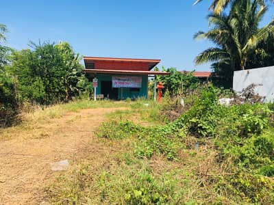 Land for Sale in Dong Charoen, Phichit - Land + one storey single House for Sale 5-1-13 Rai  , Phichit