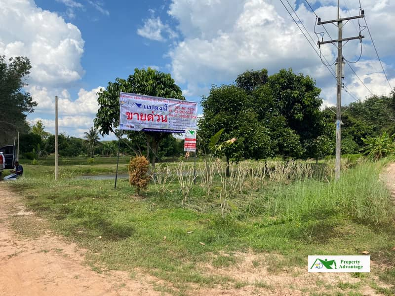 Land with fruit orchards for Sale  , Rayong