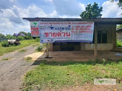 Land for Sale in Nong Bun Mak, Nakhonratchasima - Land with business for rent, 267 sq. Wah (Nor Sor 3 Kor), good location, cheap,  Nong Bun Nak District Nakhon Ratchasima Province
