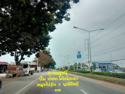 Land for Sale in Mueang Suphan Buri, Suphanburi - ที่ดินเมืองสุพรรณบุรี