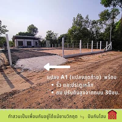 Land for Sale in Mueang Ubon Ratchathani, Ubonratchathani - Sell ready-made garden