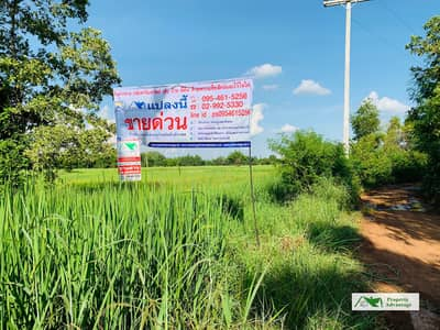Land for Sale in Phayakkhaphum Phisai, Mahasarakham - Land for Sale 7 Rai   Maha Sarakham
