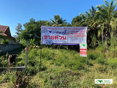 Land for Sale in Nong Wua So, Udonthani - Land for sale   3-2-0 rai  , Udon Thani