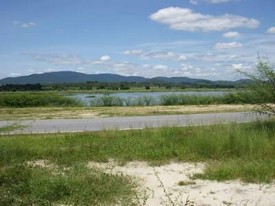Land for Rent in Si Racha, Chonburi - Adjacent to Nong Kho Reservoir, 193 square wa