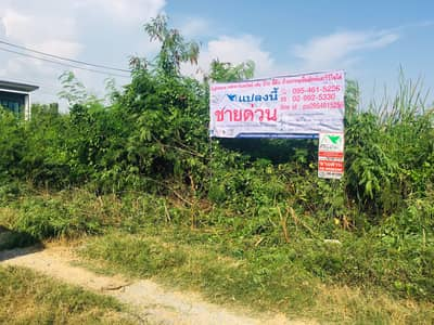 Land for Sale in Bang Bua Thong, Nonthaburi - Land for sale 60 square meters, Than Thong 2 Village, T. BangRakYai, A. Bang Bua Thong, Nonthaburi
