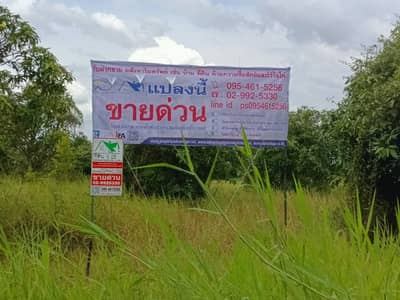 Land for Sale in Mueang Nakhon Nayok, Nakhonnayok - Land for sale in Nakhon Nayok,  5 rai, in a good location, located in the community,  Mueang District, Nakhon Nayok Province