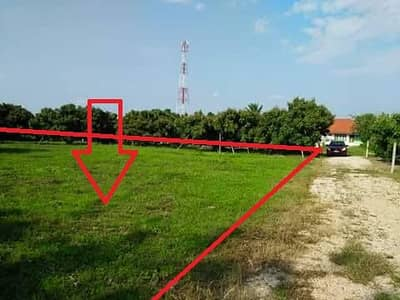 Land for Sale in Chai Prakan, Chiangmai - The land behind Chai Prakan District Office is only over 2 hundred thousand