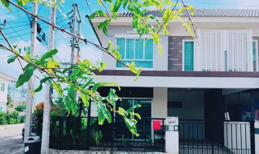 3 Bedroom Townhouse for Sale in Thalang, Phuket - Townhouse for sale Pruksa Ville 58, Thalang, Phuket, area 26 sq m. 3 bedrooms near Lotus Thalang.