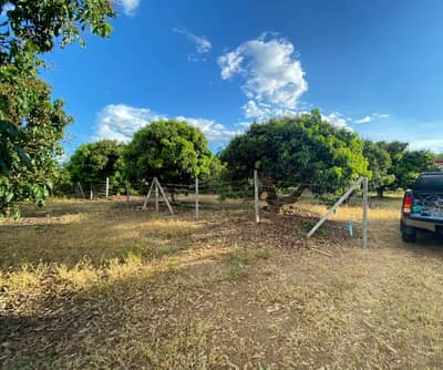 Land for Sale in Wiang Nong Long, Lamphun - Cheap, beautiful, good location, reduced price to fight COVID Next to the highway 120 meters long There is a title deed of 3 rai. For sale only 2.5 million units ready to transfer.