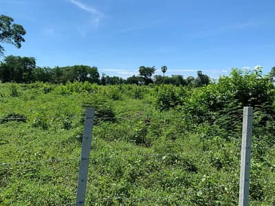 Land for Sale in Non Thai, Nakhonratchasima - 2 land plots of Nor Sor 4 Chor. Total area 10-2-56 rai