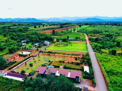 Land for Sale in Suan Phueng, Ratchaburi - Private vacation home business for sale With license
