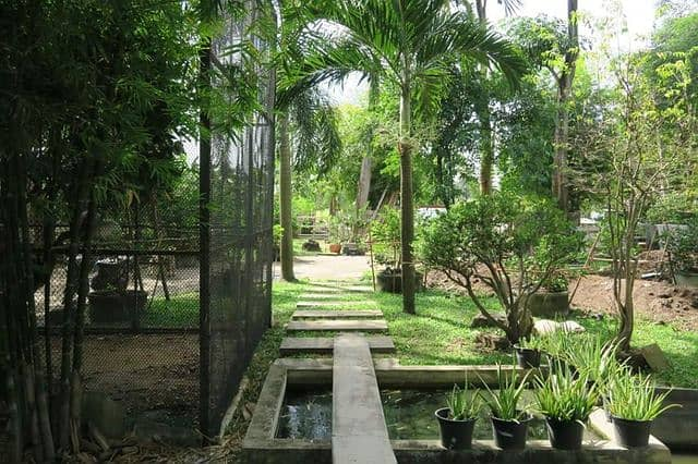 Sale/Rent Single House 5 bed 5 baht 254 Sq. Wah