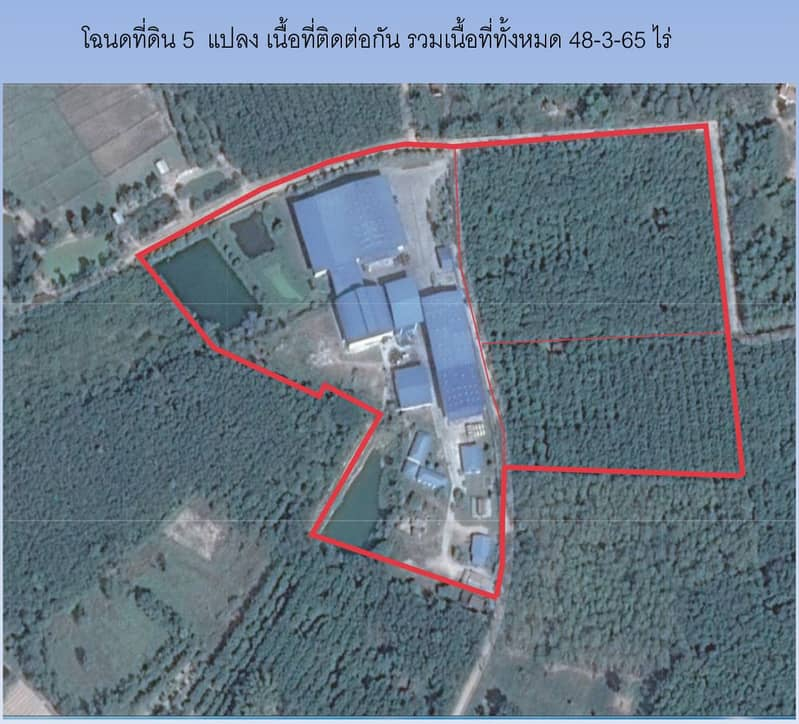 Selling a rubber factory with 5 plots of land and rubber plantations, total area of 48 rai, 3 ngan, 65 square wah, all filled area ready to use immediately.