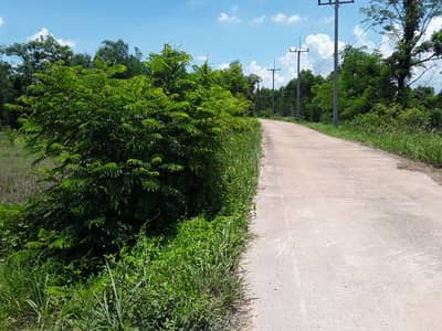 Land for sale on concrete road in the village, area 3 rai, electricity, water supply, neighbor, about 4 kilometers from Suwannason road, width about 30 meters.