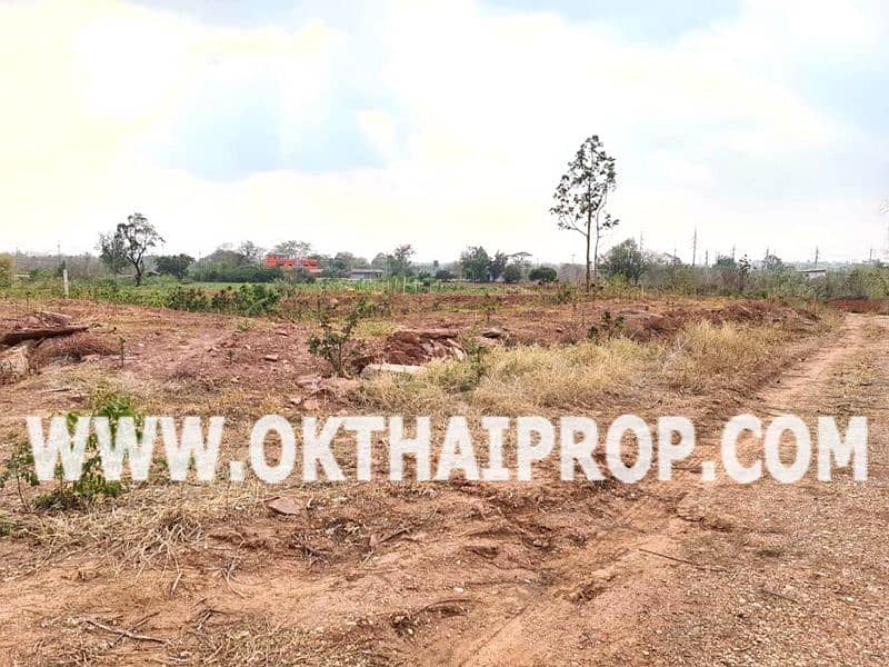Land for sale in Nong Bua Rawe, Chaiyaphum Province.