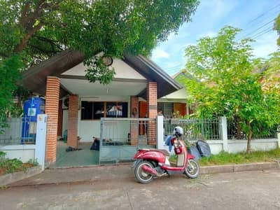 3 Bedroom Home for Rent in Mueang Chiang Mai, Chiangmai - Single storey house for rent. in the village of Chiang Mai Land