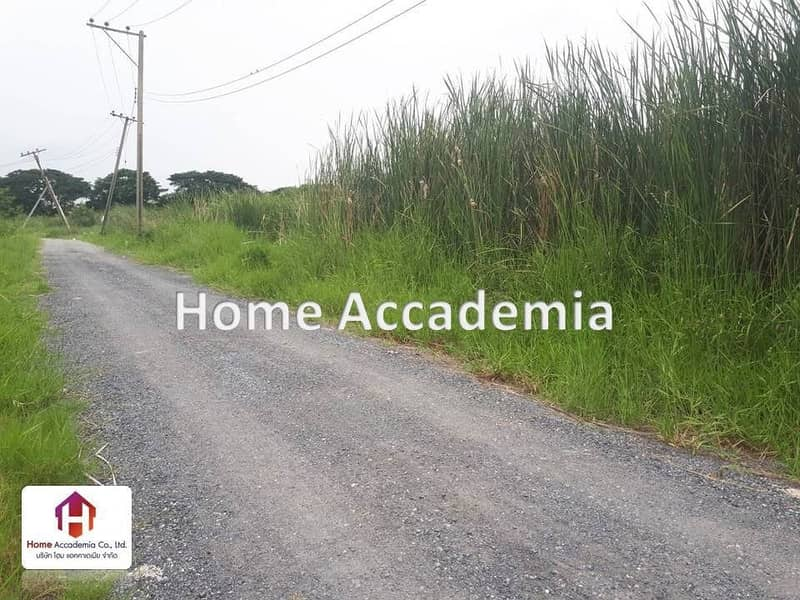 Land for rent 183 square wa, On Nut 70 1, new cut, enter from new development road, only 600 meters.