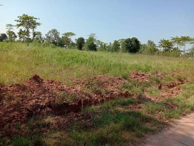Land for sale in purple plot 500 rai close to Kabinburi industrial area suitable for warehouse and industrial factories.
