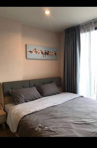 1 Bedroom Condo for Rent in Bang Sue, Bangkok - G 3293 Condo for rent, The Tree Interchange, beautiful room, ready to move in.