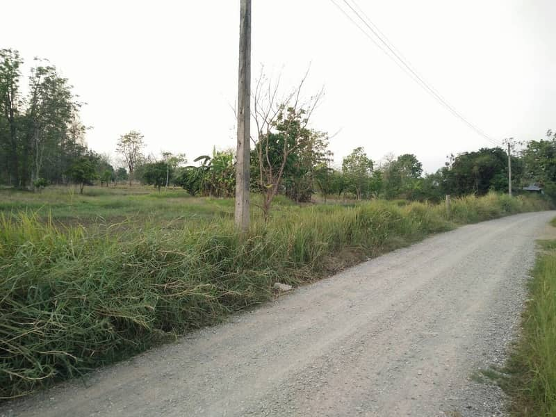 Land for sale after Chaiyong pump, Kaeng Khro District, Chaiyaphum Province, totaling 5 rai, 5 hundred thousand, totaling 2.5 million baht, suitable for a resort house.