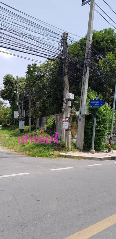 Land for Sale in Bang Pa-In, Ayutthaya - Land for sale 51 sq. w. behind Bang Pa-in School